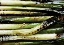 Charred Leeks with a Garlicky Romesco Sauce
