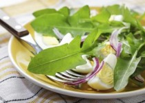 Dandelion Greens with Apple Cider & Garlic Vinaigrette
